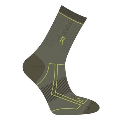Obrázek  REGATTA  2 SEASON TREK TRAIL  pánské ponožky