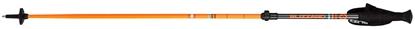 Obrázek lyžařské hůlky BLIZZARD Race telescopic 2 section ski poles