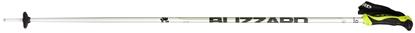 Obrázek lyžařské hůlky BLIZZARD Allmountain ski poles, silver/neon green