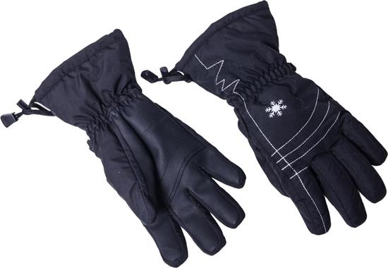 Obrázek z lyžařské rukavice BLIZZARD Viva Echo, black/silver