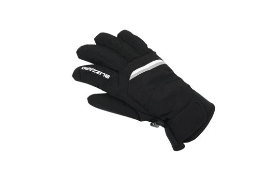 Obrázek z lyžařské rukavice BLIZZARD Viva Plose ski gloves, black/white/silver