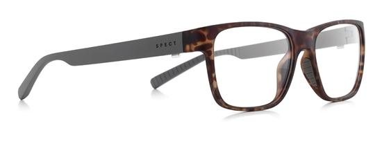 Obrázek z brýlové obruby SPECT Frame, TRUST-004, matt tortoise/dark brown, 53,5-17-145