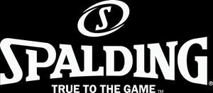 Obrázek pro výrobce Spalding