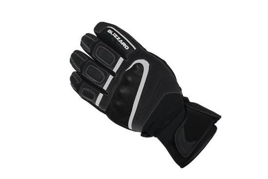 Obrázek z lyžařské rukavice BLIZZARD Competition ski gloves, black/silver